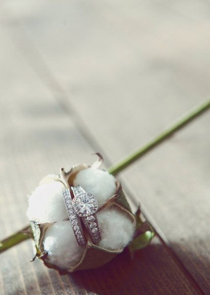 ring shot idea (cotton) - Cartersville Wedding from Stella Harper Events by Caroline Petters Photography