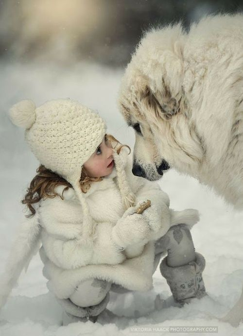 Little girl and big dog are inseparable friends and playmates in the snow