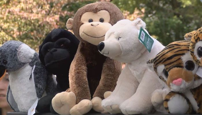 From one local organization to another - the Louisville Zoo stepped up to help sick children in our community.