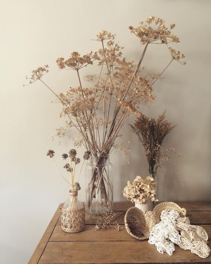 Still Life Bunga Kering Gambar Hiasan Bunga Liar
