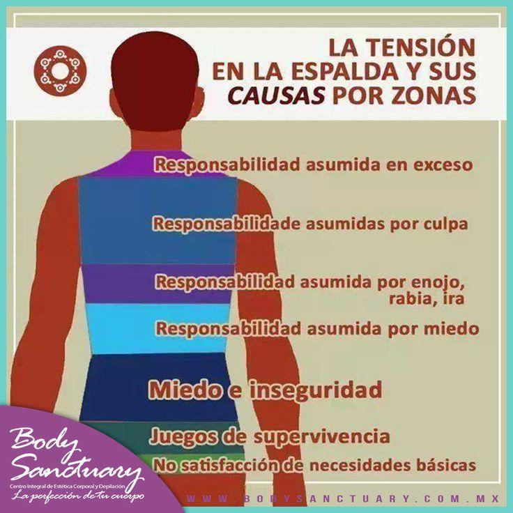 #BodySanctuary #Masajes #Aromaterapia #Ejercicio #Gym Tensión en la espalda y sus causas por zonas. Ven por un masaje relajante a: Body Sanctuary Santa Fé - WTC - Satélite Tels. (55) 2591 0403 (55) 9000 1570 (55) 1663 0375 E-mail: info@bodysanctuary.com.mx Web: http://www.bodysanctuary.com.mx/