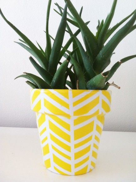 DIY Herringbone Terra Cotta Pots - Black thumb remedies: Hard to kill houseplants and pretty pots to put them in