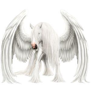 Pegasus Lusitano Light Gray