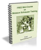 >> Miniature Schnauzer - Free Training Course on Miniature Schnauzers