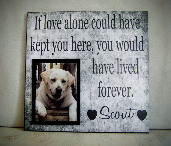 Pet Picture Frame Gift Pet Memorial Gift Dog by YourPictureStory
