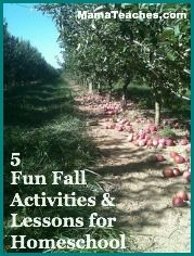 5 Fun Fall Activities and Lessons for Homeschooling: Learning Homeschool Ideas, Schools Ideas, Lessons Ideas, Learning Ideas