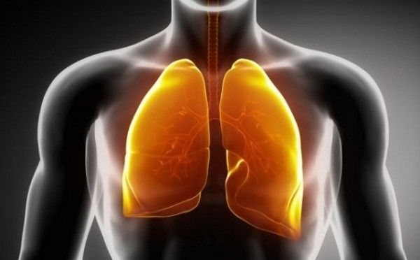 Best Natural Ways For Cleaning Your Lungs Of Nicotine And Tar | Spirit Science