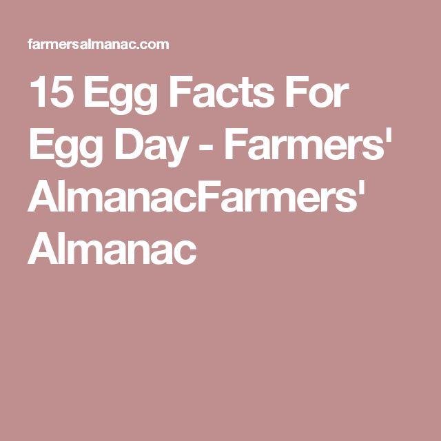15 Egg Facts For Egg Day - Farmers' AlmanacFarmers' Almanac