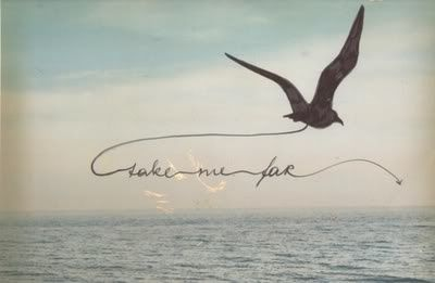 small bird tattoo tattoo - i'd love this saying 'take me away'....