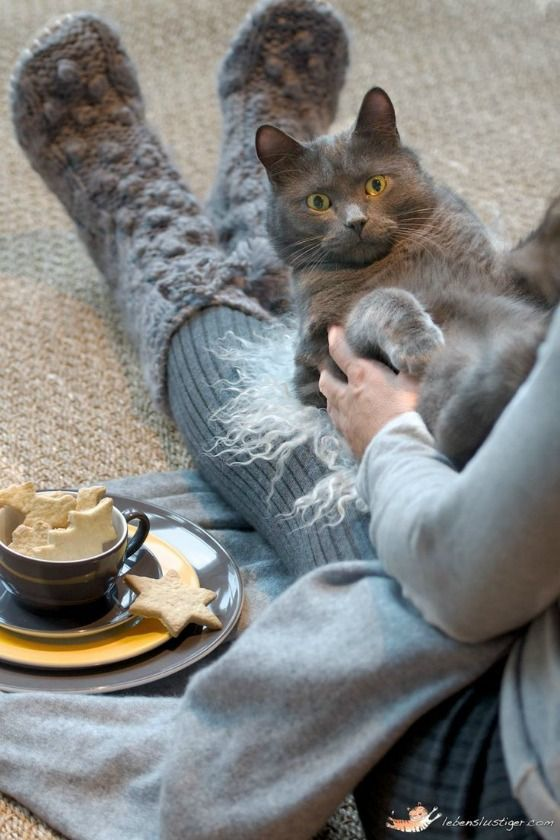 Matching grey cozy socks and fuzzy cat.