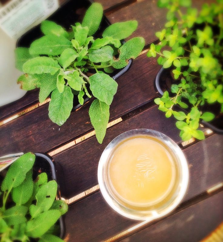 Tulsi and Mint with Cinnamon Chai | Tea with Herbs and Spices