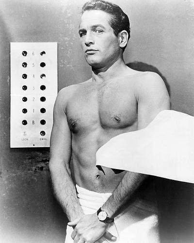 Pin by sam on barbara | Paul newman, Newman, Paul newman