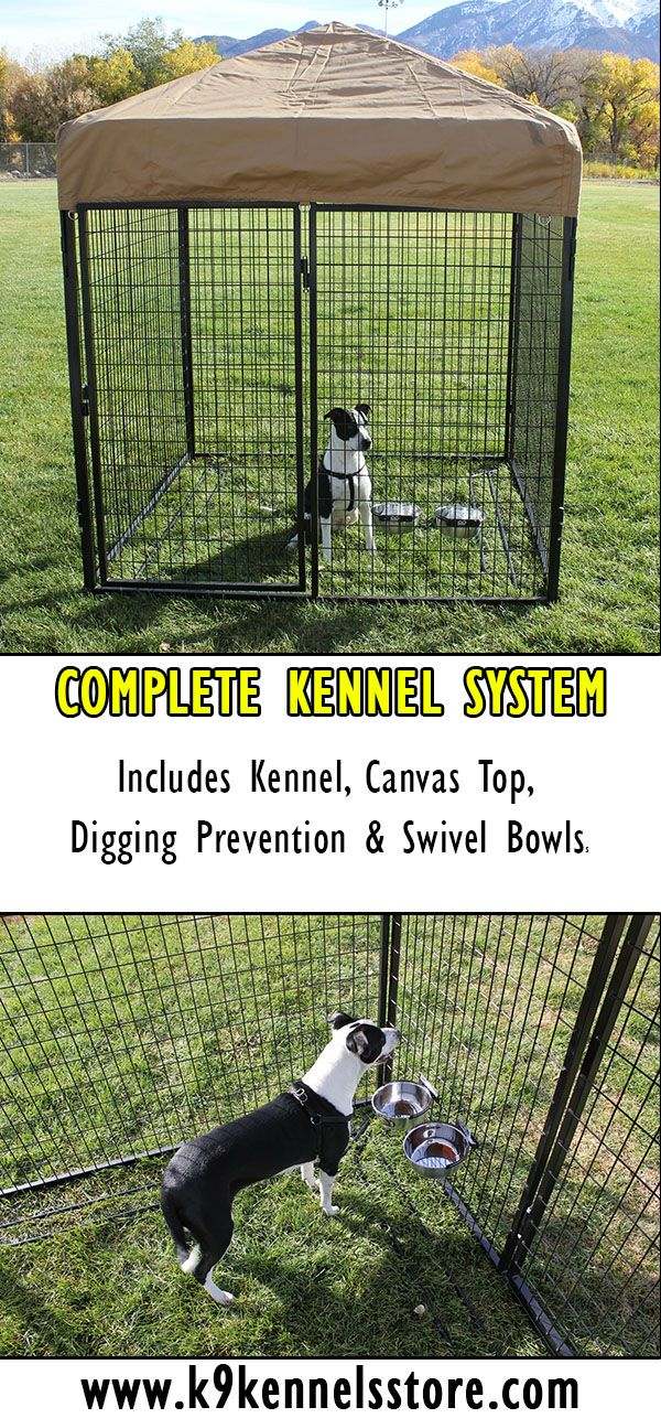 K9 Kennel Store complete dog kennel system is our middle level dog kennels. All high quality manufacturing and heavy duty construction create a long life kennel system.