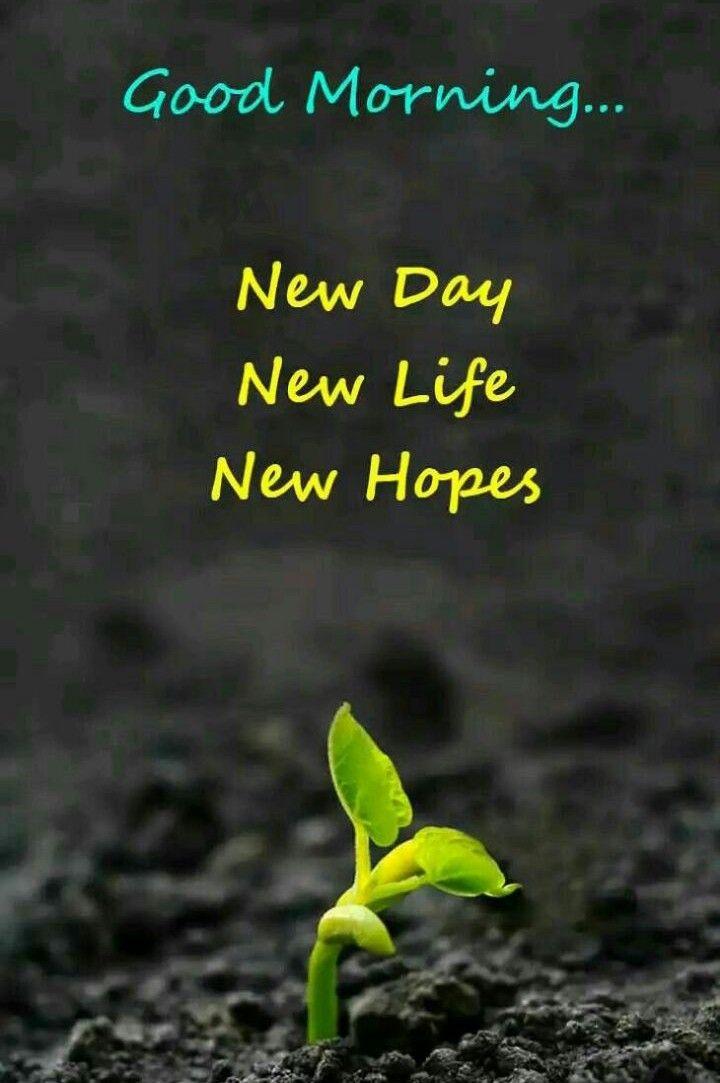 Good Morning Greetings Gud Morning 1 Pinterest Morning