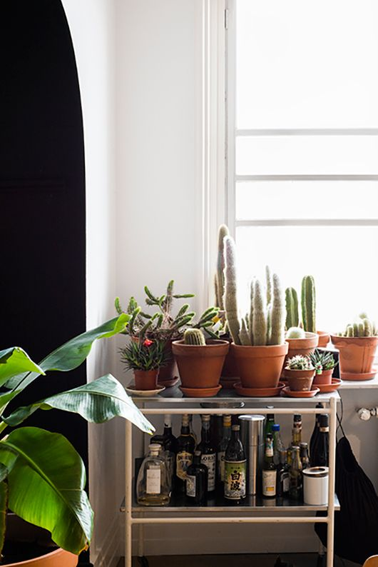 Great styling with indoor plants. (when in drought / sfgirlbybay)Ideas, Cacti Bar, Cacti Garden, S'Mores Bar, Booze, Cactus Bar, House, Bar Carts, Modern Living Room Plants Bar