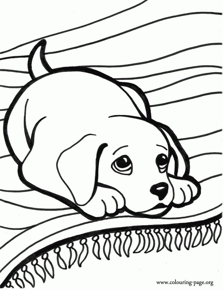 Printable Puppy Coloring Pages For Kids Bv21z Dog Coloring Book Horse Coloring Pages Puppy Coloring Pages