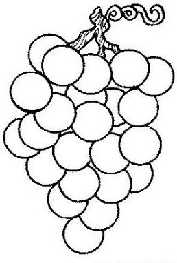 normal_22-coloriage_fruit-1.jpg (258×382)