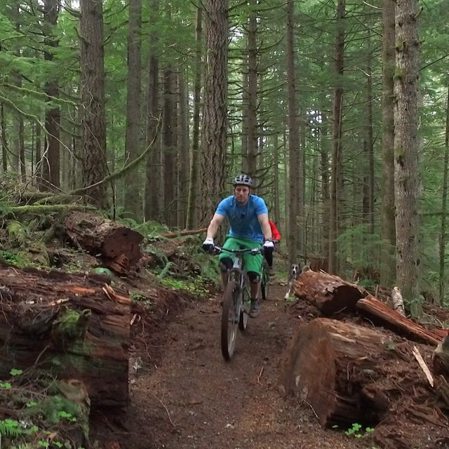 A new 4.5-mile mountain bike route in Silver Falls State Park just the beginning of trails system at Oregon's largest state park