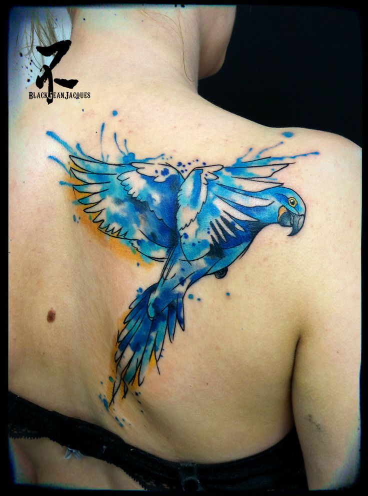 Un ara bleu tatoué en style aquarelle #parrots #ara #blueparrot #birds #birdtattoos #parrotlovers #animalart #hyacinthmacaw #animaltattoo #macaws #watercolor #watercolortattoo #colortattoo #graphictattoo #colourfullife #inkedgirl #inked #inkedup #inkedupgirls #tattooartist #tatts #tattooart #tattoos #tattoo #tatouage #zeldabjj #zeldablackjeanjacques #womantattoo #tattoomagazine