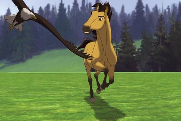 1000 Ideas About Human Soul On Pinterest: 1000+ Ideas About Spirit Horse Movie On Pinterest