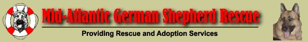 MAGSR.ORG - Providing Adoption And Rescue Services For German Shepherd Dogs In Maryland
