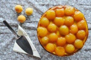 Ricottakuchen mit Mohn und Aprikosen