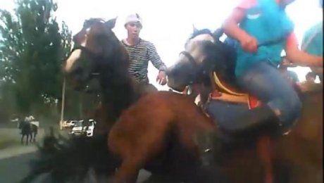 Играющие в кокпар на дороге всадники повредили машину в пригороде Алматы