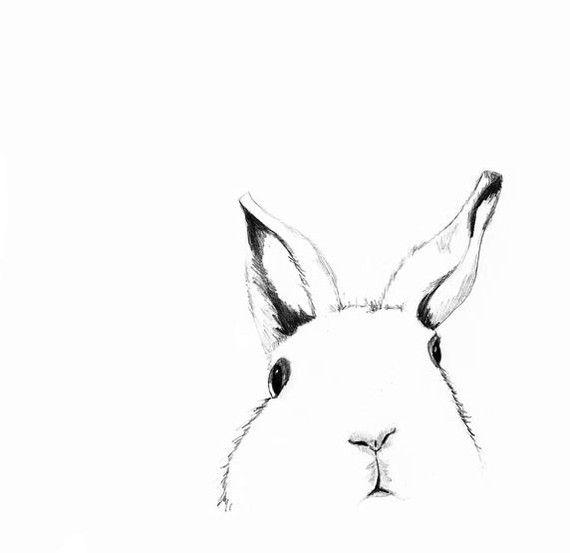 Print of Original Rabbit Drawing   Where's Alice  by corelladesign.