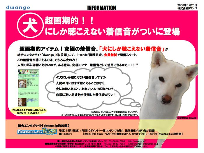 Mobile phone ringtones only dogs can hear | You know what they say about fools and their money? Well, over in Japan that will probably count double if a new ringtone download service hits the particular niche market it's aiming at - pet dogs. Buying advice from the leading technology site