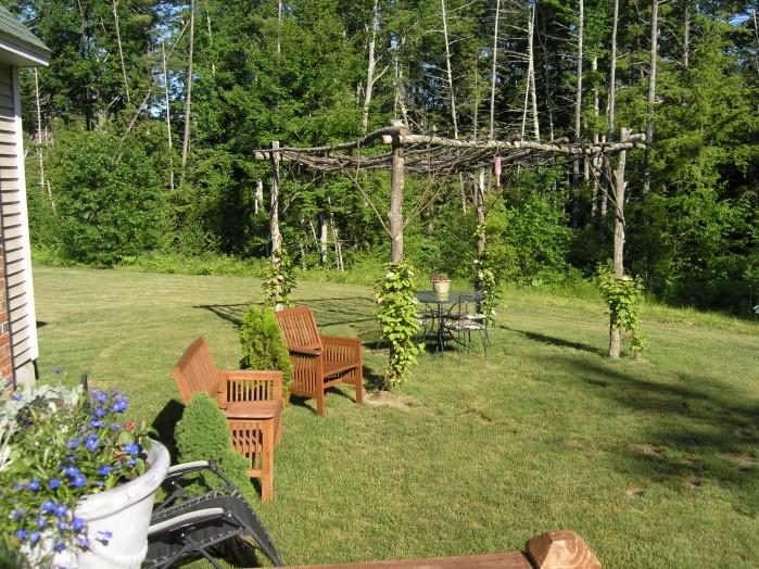 Tree parts pergola home and landscaping pinterest trees patio and pergolas - Pergola met intrekbaar canvas ...