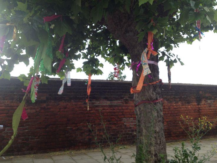 Tree decoration in Seven Kings