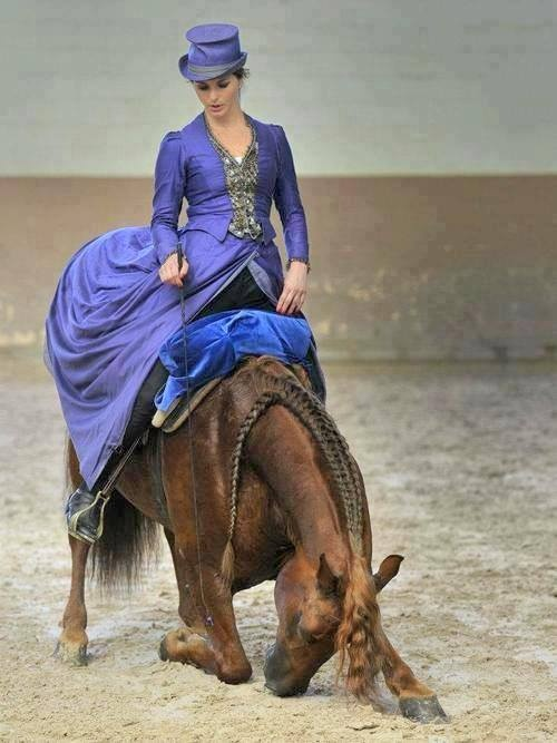 Beautiful horse bowing down all the way to the ground on the beach with a lady in a blue Victorian dress  riding on him. Beautiful Photograph!