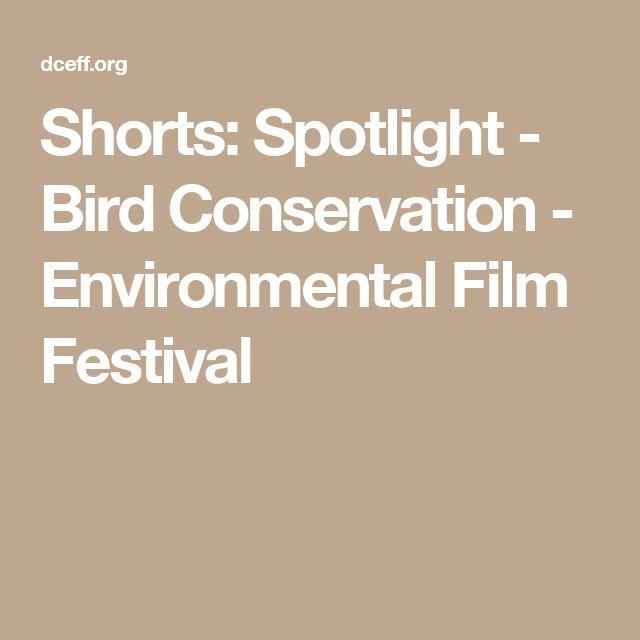Shorts: Spotlight - Bird Conservation - Environmental Film Festival