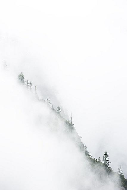 This is not a painting. This is a photograph of a foggy cliff in Yosemite National Park!