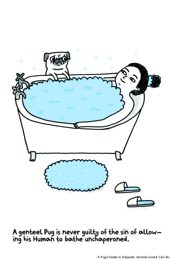 Pug In Toilet | Pug's Guide to Etiquette' By Gemma Correll Gets Into The Mind Of ...