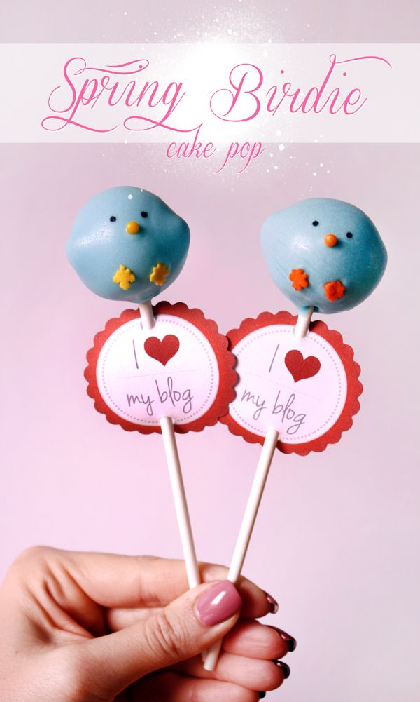 {Happy Spring} Cute Bird Cake Pops Tutorial by niner bakes