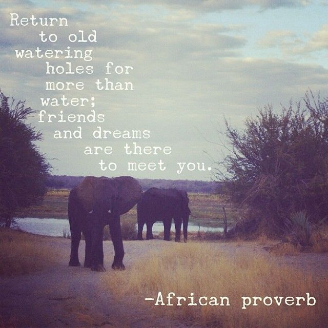 best 25 african proverb ideas on pinterest funny