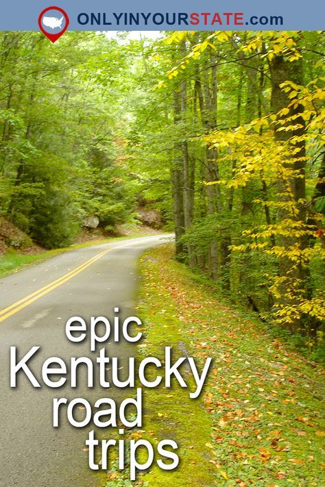 Travel | Kentucky | Attractions | USA | Things To Do | Road Trips | Places To Visit | Day Trips | Beautiful Places | Bucket List | Kentucky Trips | Bourbon Tour | Kentucky Tours | Forest | Trails | Distillery | Scenic Byway | Scenic Drives | State Parks | Outdoor | Adventure | Vacations | Wilderness | Land Between The Lakes