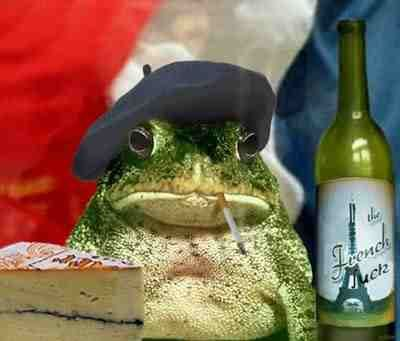 [Image: a150bb934b7b62baeb3fb4e00cb343c0--funny-...-frogs.jpg]