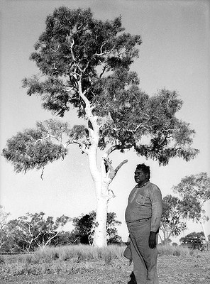 Aboriginal artist Albert Namatjira, near Alice Springs in 1950. Indigenous Australian artist Albert Namatjira (1902–1959) is arguably Australia's best known Aboriginal painter. He is known for watercolours of desert landscapes rather than the symbolic style of traditional Aboriginal art. His paintings also depict Ghost Gums that were to be listed as heritage sites in Alice Springs, but these trees have now been burnt down.