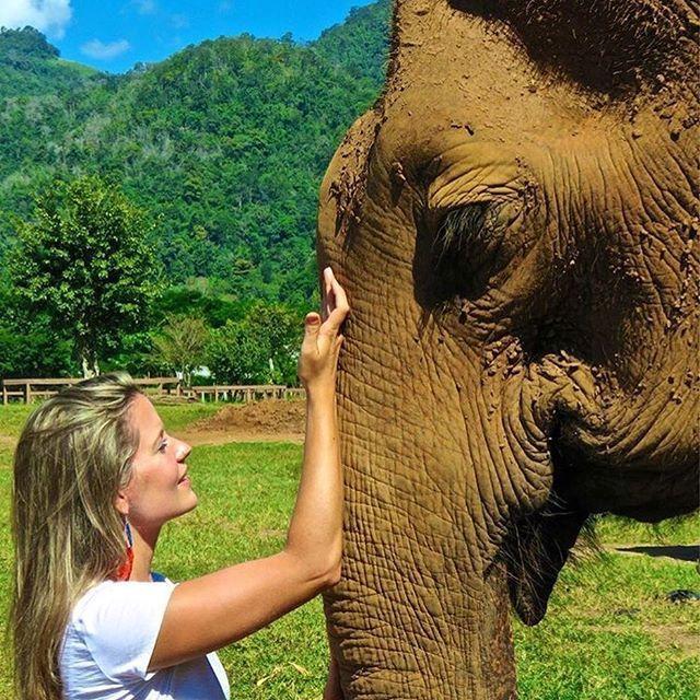 """🐘 O @trouxedela visitou o @elephantnaturepark em Chiang Mai, na Tailândia, um santuário que resgata a vida de elefantes, afastando-os dos maltratos a que são submetido nos universos do turismo e do circo. Informe-se a respeito e não colabore ou patrocine esse tipo de """"aventura"""" com animais! #QueroViajarMais"""