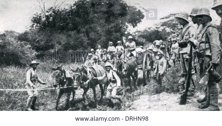 Portuguese Troops In Southern Angola, West Africa, Ww1 Stock Photo, Picture And Royalty Free Image. Pic. 66158100