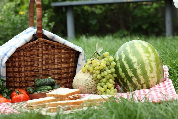 Un picnic es una buena idea para relajarte y tener contacto con la naturaleza, un plan ideal para descansar este fin de semana.