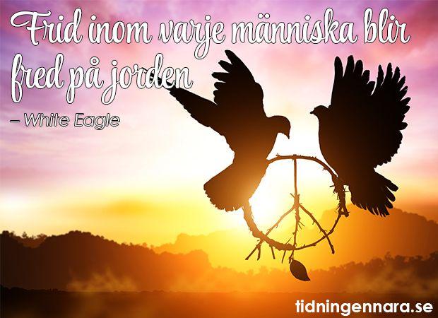 Fred på jorden!