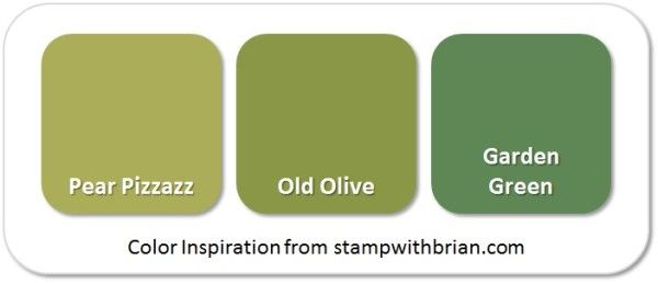 Stampin 39 Up Color Inspiration Pear Pizzazz Old Olive Garden Green Stampin 39 Up Color