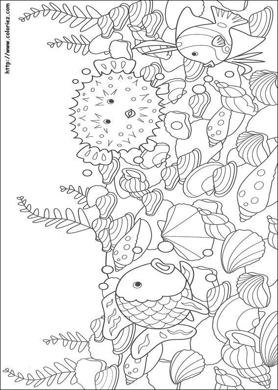 Best 25+ Rainbow fish bulletin board ideas on Pinterest