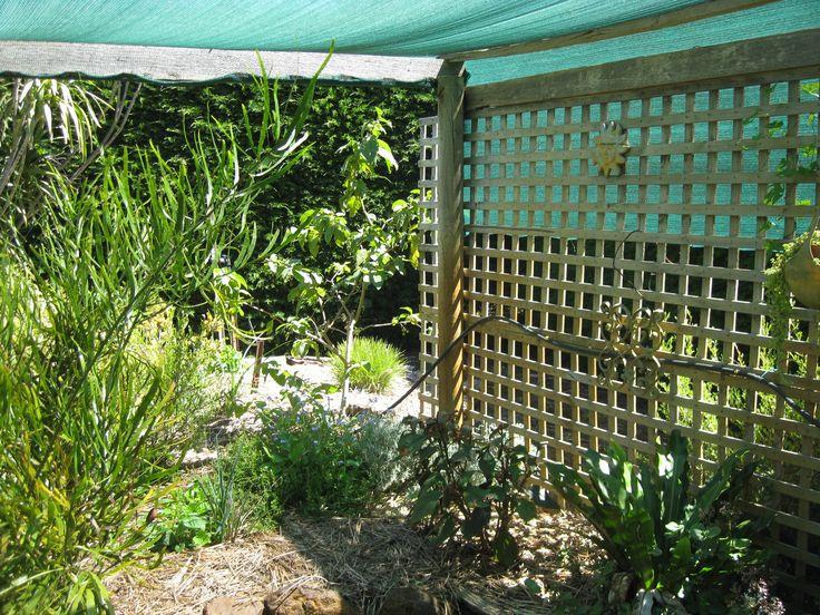 Farm green house (Tahara-home)