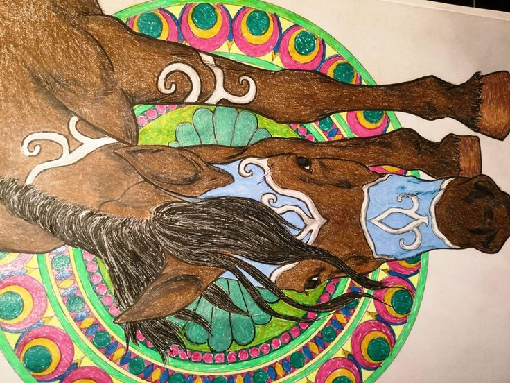 Amazon The Enchanted World Of Horses Adult Coloring Book 9781537590912