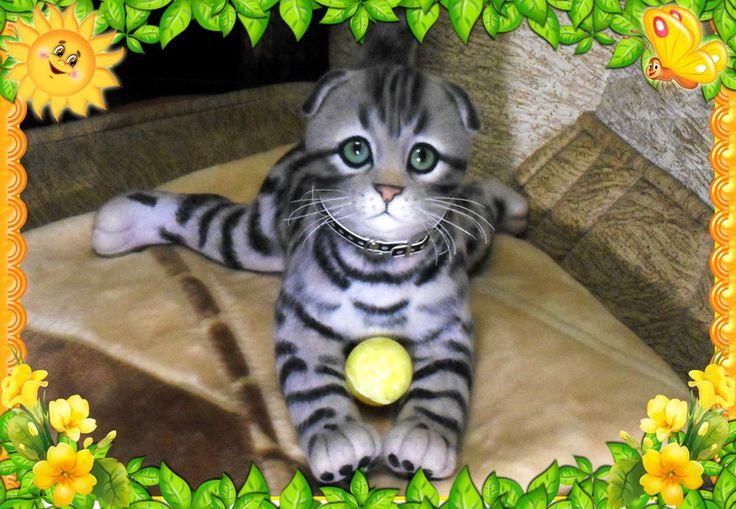 kitten, felt cat, kitten artist, home tiger, New Year's gift, mohair bear,  #Inasinglecopy #Foranyoccasion