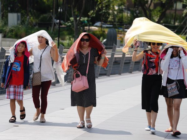 "Wilting from the heat? A group of researchers are looking at ways to ""cool"" Singapore, by reducing the urban heat island (UHI) effect."
